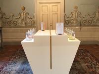 La sala che ospita la mostra il Naso e la Storia