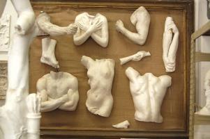 Dettagli anatomici