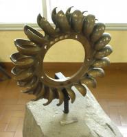 Girante in bronzo di piccola turbina idraulica tipo Pelton