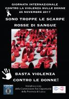 Locandina Provincia di Lucca Campagna Fiocco Bianco 2017