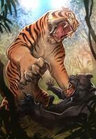 La tigre, Federico Bertolucci